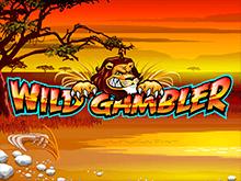 Игровой аппарат Wild Gambler