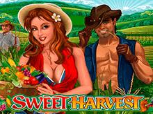 Игровой аппарат Сладкий Урожай